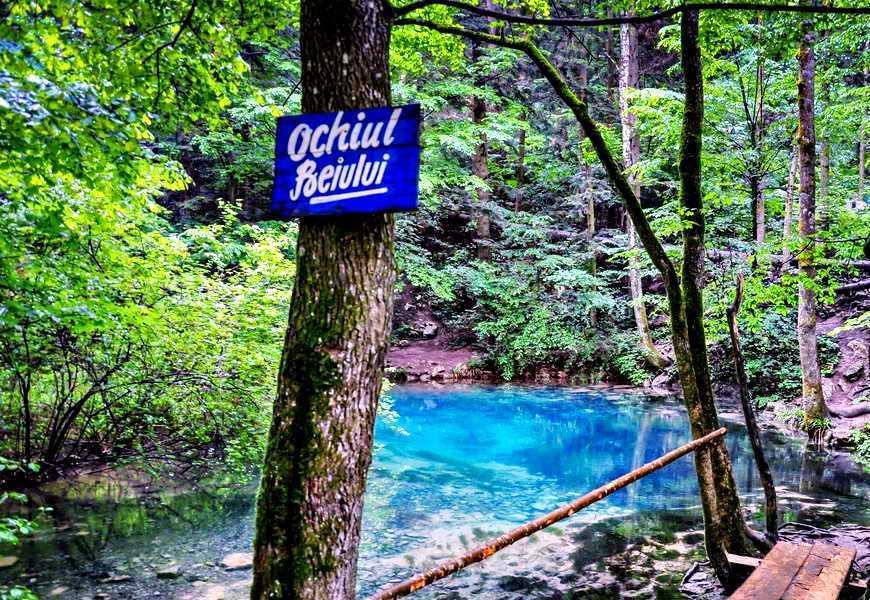 Parcul national Cheile Nerei
