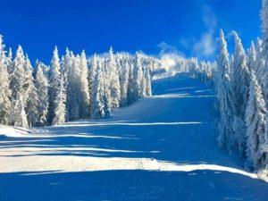 Excursie Poiana Brasov 24-26 ianuarie 2020