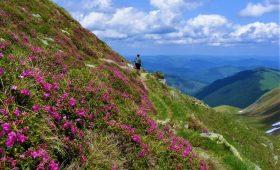 Drumetie muntii Rodnei si Suhard