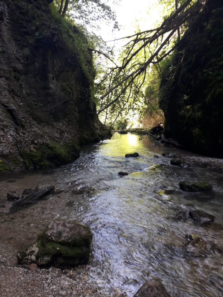 Drumetie Cheile-Galbenei-muntii Apuseni